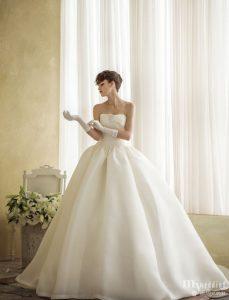 photo de robes de mariées dans le 81